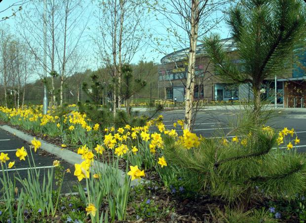 4d landscape design littleton green primary for 4d garden design